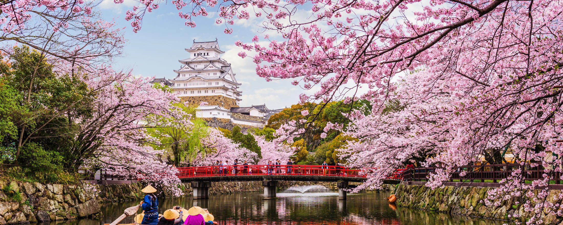 Top những địa điểm du lịch siêu cuốn hút vào tháng 3/2020