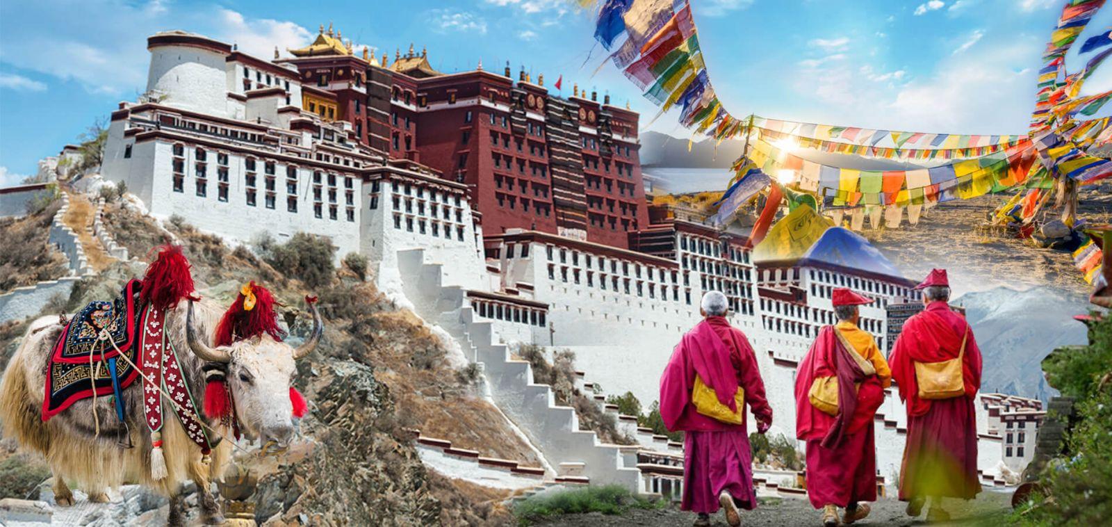 Y học cổ truyền Tây tạng gắn liền với Phật pháp như thế nào?