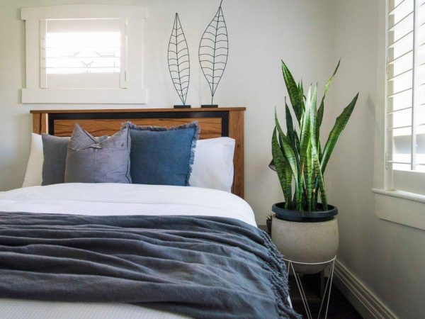 Cần lưu ý điều gì khi đặt chậu hoa trong phòng ngủ?