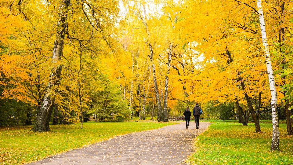 Tại sao nên đi du lịch mùa thu nhất trong tất cả các mùa