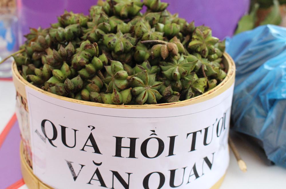 Hoa hồi Văn Quan có gì đặc biệt so với hoa hồi các vùng khác?
